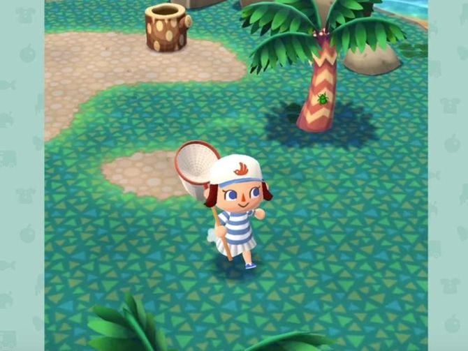 animal-crossing-pocket-camp.jpg